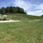 High Country Wineries - Linville Fals