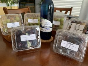 NC Muscadine Grapes and Wine