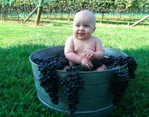 Baby Jack Loves Laurel Gray Merlot