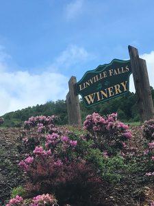 Linville Falls Winery - Linville Falls, NC