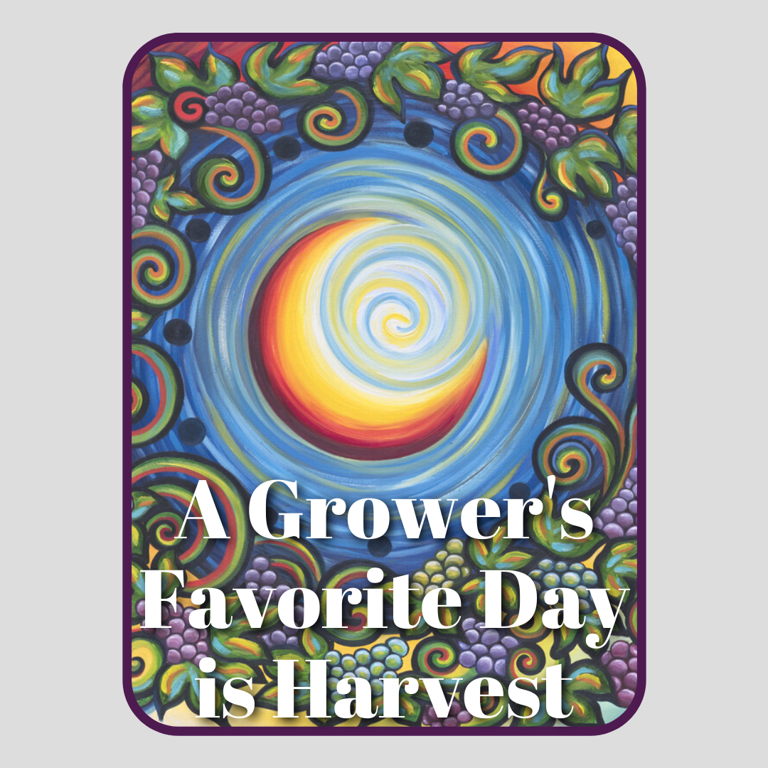 A Grower's Favorite Day is Harvest
