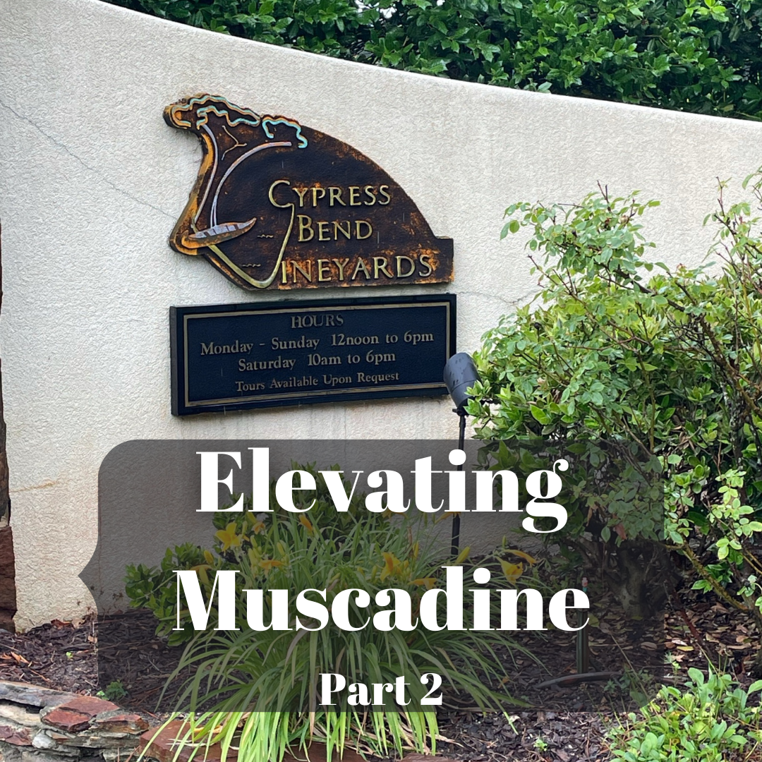 Elevating Muscadine Part 2